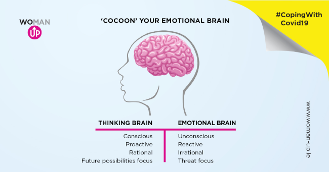 infographic showing brain reactions to situations.