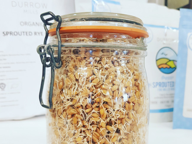 A jar containing sprouted grains.