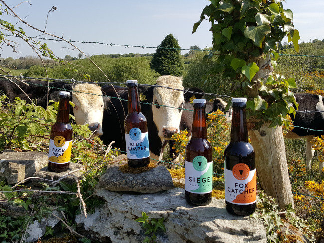 Beer bottles on a wall with cows behind it.