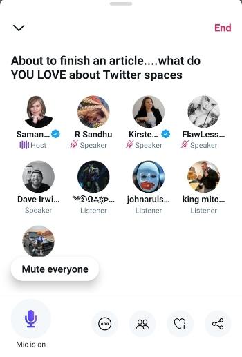 Screenshot of Twitter Spaces.